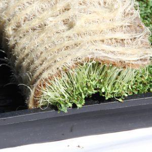Hemp Grow Medium for hydroponic farming