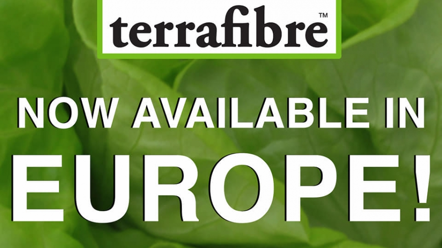 TF Europe